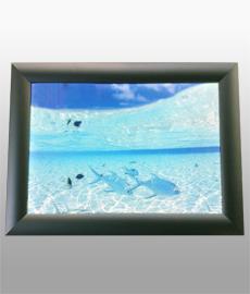 Световая панель Frame LED